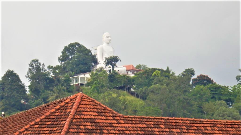Boeddha op de berg