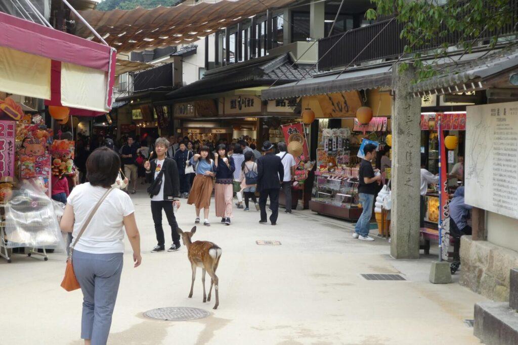 Historische reisgids van Miyajima, Japan